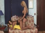 Transpantyhose – Kawana And Bruna Enjoyin …